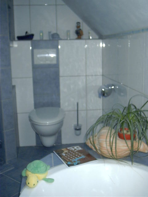 Bad_Mosaik_blau_Toilette